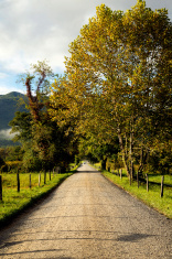 Cades Cove Tennessee with dirt road
