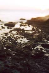 Avila Beach Portrait