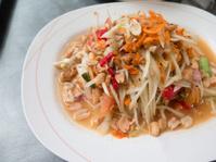 closed up papaya salad,thai food