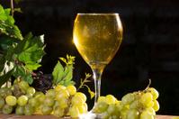 Sparkling White Wine