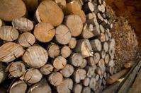 Logs to burn