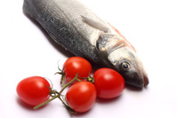 Sea bass isolated on white background with tomatoes