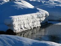 Snowy log in Creek, Whistler, BC