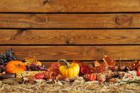 pumpkins border
