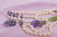 romantic composition in  lilac