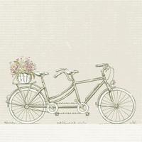 Vintage Tandem Bicycle with Flower Basket