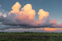 Florida Afternoon Cloudscape