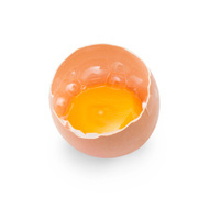 half egg