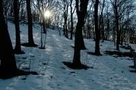 Winter Sun beam