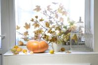 Autumn still-life with a pumpkin