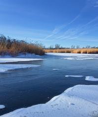 photo frozen pond