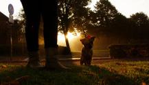 Morning walk at sunrise
