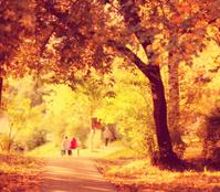 Autumn Street Park