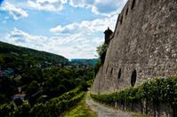 castle vinyard
