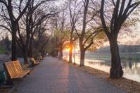 alley near river
