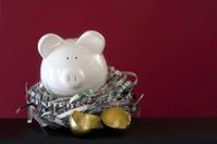 Savings Bank and Empty Nest Egg