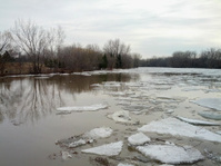 River with ice in spring