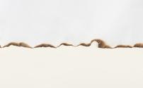 burnt paper edge