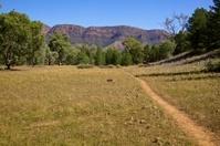 Yuluna Hike Flinders Ranges National Park