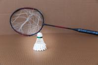 Shuttlecock and broken badminton racket