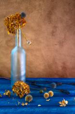 Still life dried flowers bottle
