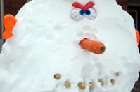 Diabolical Snowman