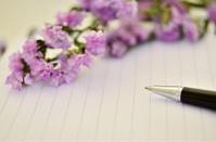 pen on diary
