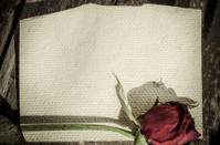 Dry red rose and old mulberry paper on grunge background.
