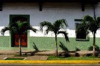 Avenue in Leon