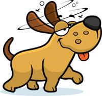 Drunk Cartoon Dog