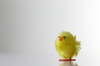 decorative toy chicken