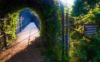 Bridge and trail junction along the Appalachian Trail near South