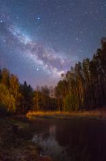 Starry night scene