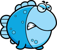 Angry Cartoon Fish