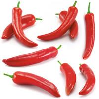 Multiple peppers --- peperoni / chili