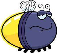 Sad Cartoon Firefly