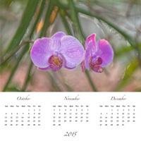 flora Calendar 4