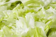 Lettuce leafs salad
