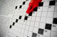 macro on crossword