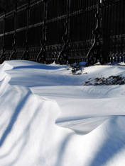 Fence & Snowdrift