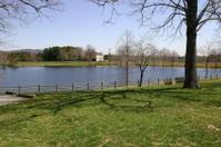 Lake in Landscape