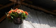 fake flower orange color in hanging basket