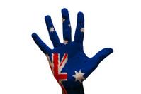 palm flag australia