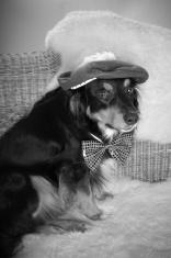 Old Fashioned Ladies' Man