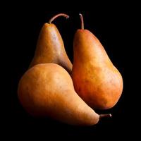 3 Bosc Pears Still Life