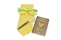 Thailand Passport, Travel International