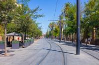 Tram rails in the city of Seville, Spain