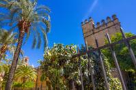 Walls and gardens of the Alcazar de Cordoba, Spain