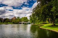 Pond in the Public Garden in Boston, Massachusetts.