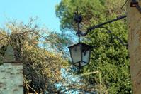 Lantern in Tuscany